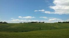 Nel cuore della Terra di Siena c'è un paesaggio perfetto, essenziale. Lo compongono le colline, i calanchi, il corso sinuoso del fiume, i cipressi che coronano isolati le alture o che seguono, in ordinati filari, l'andamento delle strade, questa è la Val d'Orcia con i suoi bellissimi borghi medievali.  Few kilometres away from the Villa you can pick a choice of Tuscany's world famous landscapes and Tuscan medieval towns like:  Castiglione d'Orcia, San Quirico d'Orcia, Montalcino, Pienza. Cypress Trees, Interactive Map, In The Heart, Siena, Terra, The Locals, Tuscany, Countryside, Golf Courses