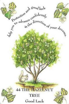 Hazel Tree Corylus Tree of Knowlege Ninth month of the Celtic Tree calendar, August - September Ninth consonant of the Ogham alphabet - Coll Folklore, Hazelnut Tree, Tarot, Magical Tree, Celtic Tree Of Life, Tree Illustration, Book Of Shadows, Tree Art, Witchcraft