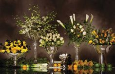 Pedestals and vases for your flowers make perfect centerpieces for your wedding. Shop these are Nima Oberoi Lunares.