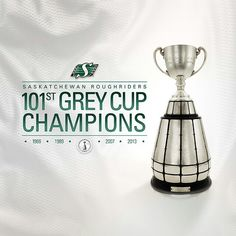 2013 Grey cup champions! Still can't believe I was there!!