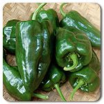 Organic Ancho Poblano Hot Pepper.