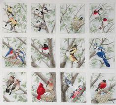 Quilting Fabric with Birds   12-Block-Fabric-Panel-Beautiful-Bird-Quilt-Squares-Chickadee-Bluejay ...