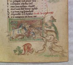 le bestiaire divin Guillaume Le Clerc panthère attirant les autres animaux