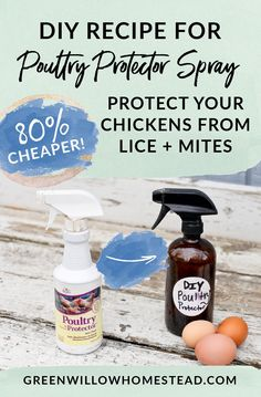DIY Recipe Poultry Protector Spray To Protect Your Hens From Lice And Mites! Chicken Coop Plans, Chicken Coop Designs, Diy Chicken Coop, Backyard Chicken Coops, Chickens Backyard, Keeping Chickens, Raising Chickens, Raising Goats, Dust Bath For Chickens