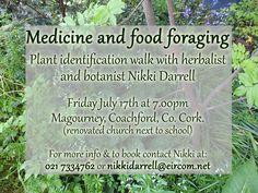 Medicine and Food Foraging July Nikki Darrel, Coachford Plant Identification, Herbal Medicine, Herbalism, Herbs, Events, Food, Essen, Herb, Meals