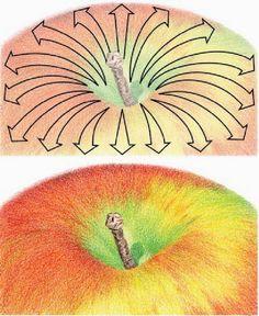Art Sketches, Art Drawings, Drawing Apple, Colored Pencil Techniques, School Art Projects, Color Pencil Art, Plant Illustration, Fruit Art, Elements Of Art