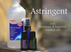 Make Your Own Astringent, Toner & Makeup Finisher + 15 Ways to Use Witch Hazel!