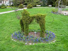 Topiary by AllWaysNY, via Flickr