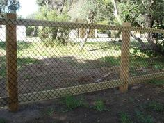 Cheap garden fence ideas - Deer Netting - Click Pic for 25 Garden Fencing Ideas