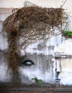 Artist Dalata...Cry Baby Dry or Die'
