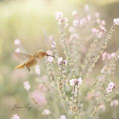 so delicate a moment...
