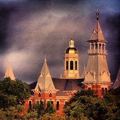 #Baylor University. #SicEm (via shelleygiglio on Instagram)