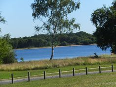Chasewater Reservoir on a sunny day - it does happen!