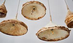 Britští designéři vyrábí svítidla a nábytek z podhoubí