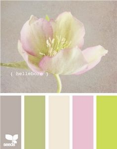 another pretty palette for a little girl's room {via Design Seeds}