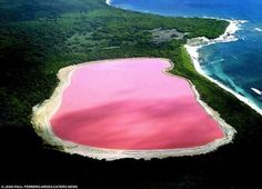 Lake Hiller in Western Australia. This is it's natural color!!