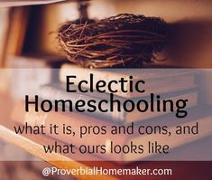 Eclectic Homeschooling: What it is, Pros and Cons, and What Ours Looks Like - Proverbial Homemaker Public School, School Days, School Fun, Middle School, Learning Apps, Home Learning, Homeschool Curriculum, Homeschooling Resources, Teaching Tips