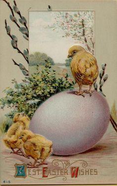 Vintage Easter Chicks & Egg Greetings Postcard Card Victorian Embossed #Easter