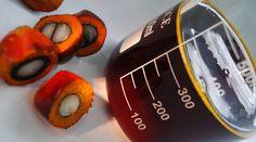 #Chercheurs et industriels trouvent une alternative locale aux huiles de palme - 20minutes.fr: 20minutes.fr Chercheurs et industriels…