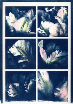 Cyanotype print from a composite digital negative. The original files were scans of parrot tulips. This cyanotype has been hand-tinted with watercolors.
