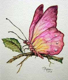Lyn Knox's media content and analytics - Photo Composition İdeas Butterfly Painting, Butterfly Watercolor, Butterfly Art, Watercolor Animals, Watercolor And Ink, Watercolour Painting, Painting & Drawing, Butterflies, Watercolours