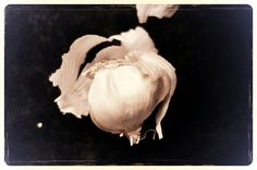 Food for Runners: Garlic -- health benefits and best recipes from across the web!