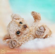 Muzzleen By Iveta Rakova - Bear Pile