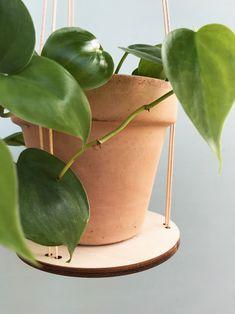 Lyng gør det muligt for dig at hænge dine planter ned fra loftet, med det minimalistiske udtryk gives alt opmærksomheden til dine smukke planter.    #plant #interiør #planter #grønneplanter #mithjem #blomster #hjem #indretning #grønthjem #grøn #miljø #slowliving #slowfood #urbangarden #urbanfarming #småhjem #design #danskdesign #nordiskehjem #nordisk #danskproduceret #smallspaces #plantstagram Mullets, Planter Pots, Deco
