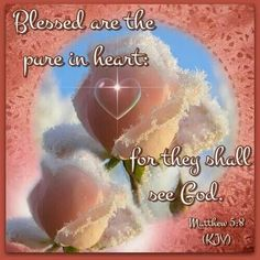 Blessed are the pure in heart ~ Matthew 5:8 KJV