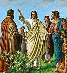 SEGUNDO O EVANGELHO:  Respondendo então Jesus, disse-lhes: Ide, e anunc...