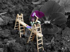 Frühlingsmaler... | Flickr - Photo Sharing!