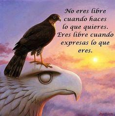 ... No eres libre cuando haces lo que quieres, Eres libre cuando expresas lo que eres.