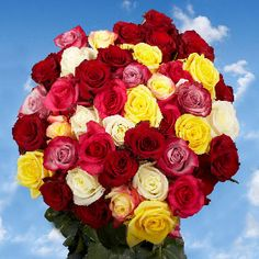 Fresh Cut Roses Delivery 50 Roses 25 Red Roses 25 Color Roses Just Perfect Beautiful Red Roses, Amazing Flowers, 100 Red Roses, Pink Roses, Birthday Bouquet, Birthday Roses, Pink Birthday, Rose Delivery, Wholesale Roses