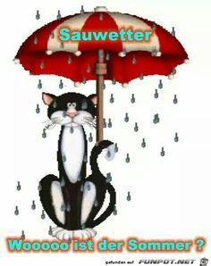 lustiges Bild 'Sauwetter.jpg'- Eine von 60245 Dateien in der Kategorie 'Lustiges' auf FUNPOT.