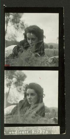 ....beautiful elizabeth taylor...