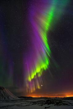 Hermosa auroris