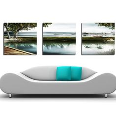 New Arrival Swan Swimming In the River Canvas Wall Prints