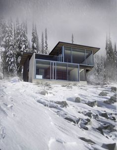Snowy View by D'ARCY JONES DESIGN INC