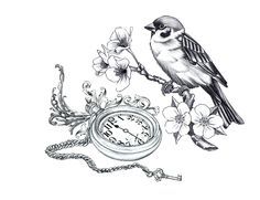 Google Image Result for http://bellefantaisie.net/wp-content/uploads/2011/02/bird-and-pocket-watch.jpg