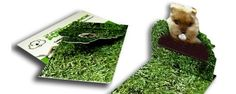 Online Brochure Printing | Fustellatura degli Imballaggi