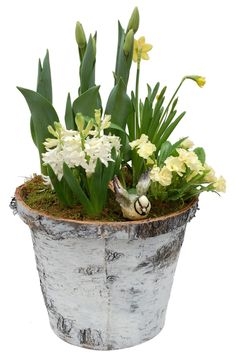 Simple and classic #spring Inspiration! Get yours now: http://www.sheridannurseries.com/products_and_services/custom_design