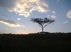 Tala Game Reserve, Pietermarizburg, South Africa