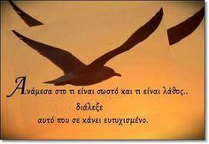 Αυτο που σε κάνει ευτυχισμένο ! Small Words, Greek Quotes, Meaningful Quotes, Beautiful Words, Wise Words, Psychology, Cool Photos, Thoughts, Signs