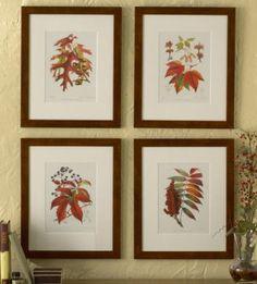 Biz Budget Designs: DIY Free Botanical Print Artwork