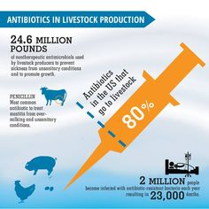 Do you care about the overuse of antibiotics? This report and infographic will show you how the conventional dairy industry is contributing to this concerning issue: http://gmoinside.org/starbuckscroptocup/ #whatthestarbucks #GMOs #antibiotics