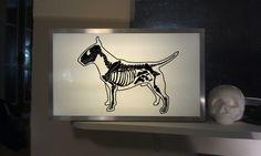 Panneau lumineux - Bull terrier