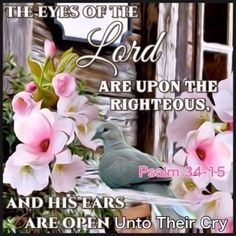 Psalm 34:15 The eyes of the Lord are upon the righteous, and his ears are open unto their cry. Psalm 34, Crying, Lord, Bible, Eyes, Biblia, Cat Eyes, The Bible