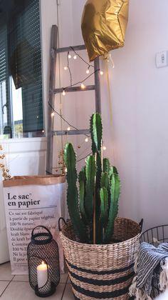 HOME - Cactus / Nordic decoration inspiration / Echelle bois & panier en osier - Cosy