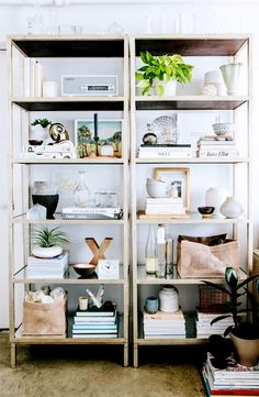 styled side by side bookshelves