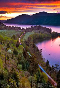 Sunset at Columbia River Gorge, Oregon/Washington, USA   (by Darren White Photography)